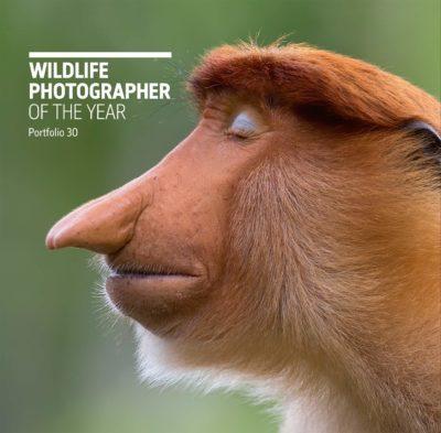 Wildlife Photographer of the Year: Portfolio 30